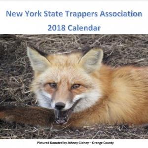 2018 Lotto Calendar